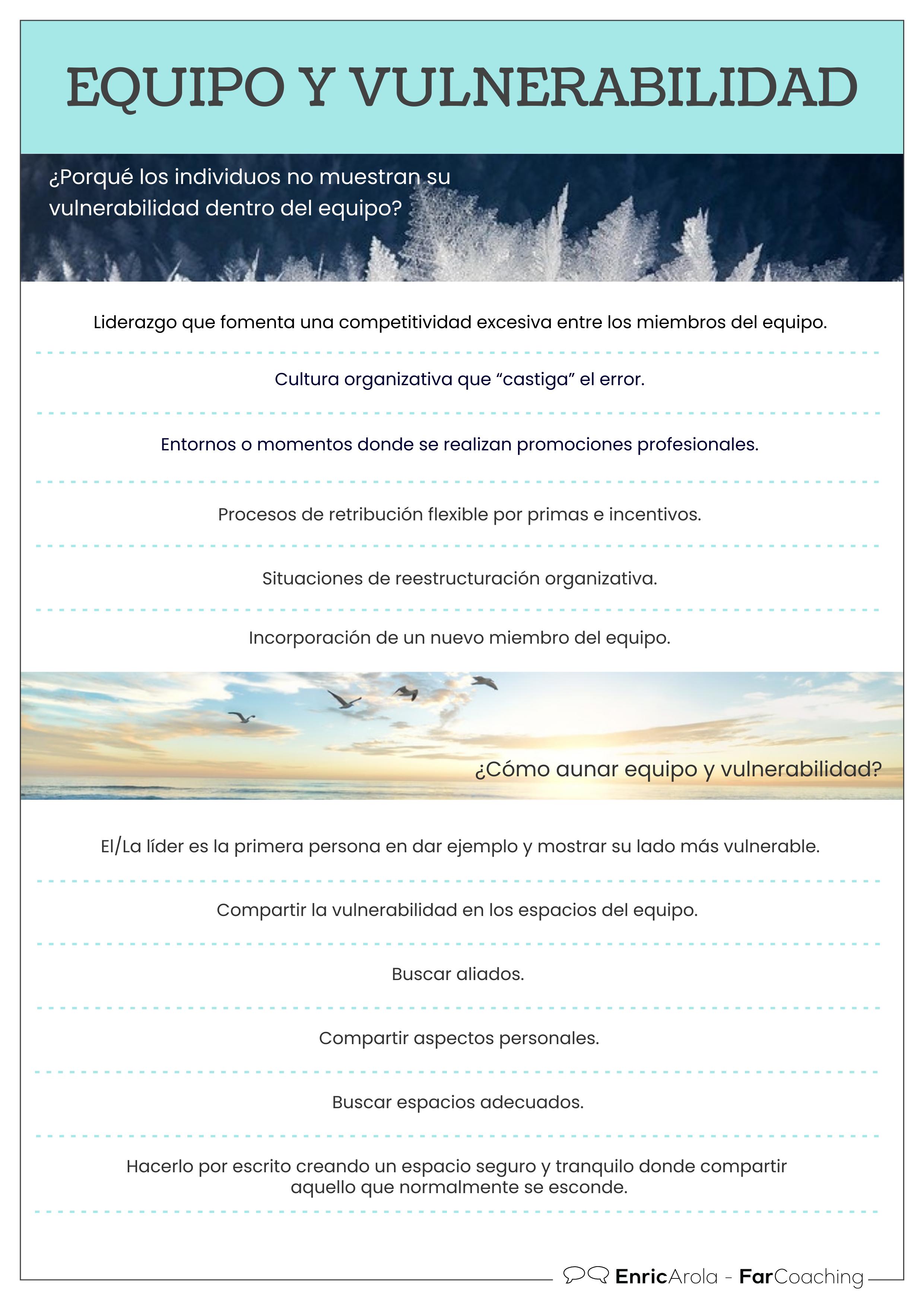 Infografía Equipo y vulnerabilidad