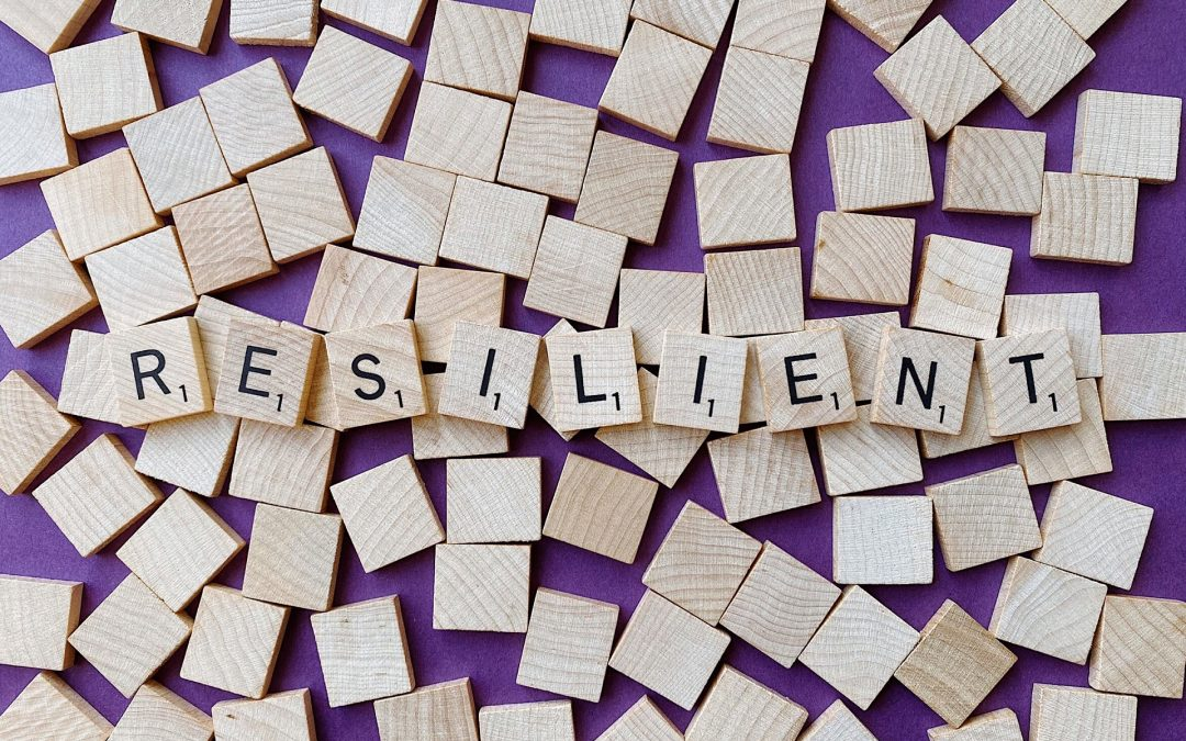 Equipos Resilientes